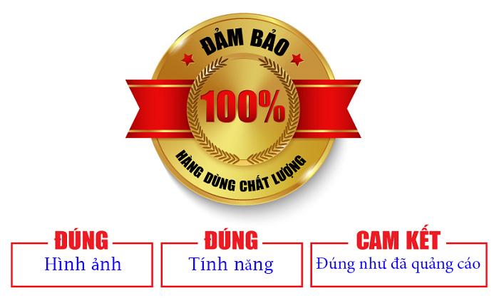 Lắp định vị tại Ninh Giang